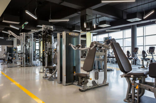 fitness-chelmiec-23